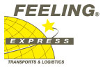 Feeling Express-Transport express sur mesure-Logo